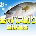 冬のバス釣り基礎講座