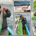 【タチウオ好きが考察】東京湾タチウオジギングでのラインの重要性とは