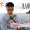 【プランクトンパターンに激効き】サーティフォーの「プランクトン」に2020年NEWカラー4色が登場!