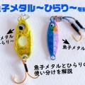 バイトのエキスパート!フォールに特化した魚子メタル~ひらり~