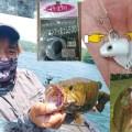 チャターベイトの秘密チューン!と最新!野尻湖(長野県)情報!