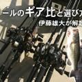 【永久保存版】ベイトリール「ギア比」の選び方。バス釣り入門者に分かりやす~く伊藤雄大が解説
