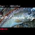 渓流ベイトフィネスの申し子、レイズ・スペクトラ「RZS51LL-BC」の実釣ムービー