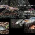 渓流から海まで根こそぎ釣れる!モエビ、シャコ等の甲殻類の動きを徹底再現!リトルジャックのハネビックスカスタムⅡ-35