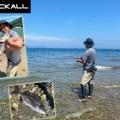 【色々な魚が釣れてエンジョイできる】一宮安幸が「渚」で楽しめるライトゲームの魅力とオススメルアーをご紹介!
