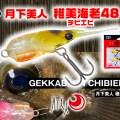 【月下美人 稚美海老(チビエビ)48】リアルな小型エビ系シンペンが登場【メバリングの武器】