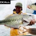 【様々なフィールドで活躍中】水野浩聡が「ハニーナゲット」を使って琵琶湖のディープで数釣りフィッシングを楽しむ!