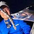 【どじょうチャターがヤバい!?】堤防オカッパリで簡単にタチウオが釣れる注目リグを紹介!
