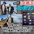 ブリ、サワラ青物、ショアジギング絶好調中!もっと簡単に大物を釣る方法