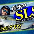 【様々なターゲットを狙える】最初から最後まで釣れまくり!スーパーライトショアジギングをハヤブサ橋本翔大が満喫!