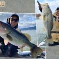 【フルスイング5inch】琵琶湖で密かに使われているらしい…こんな使い方