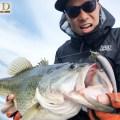【急激な水温低下でも安定の釣果】今、そしてこれからの琵琶湖でキーになるのは「カットスイング」と「ヘッドスライド+フルスイング」