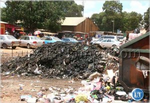 File: Uncollected garbage