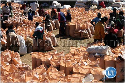 File: Peasant farmers wait for the Food Reserve Agency to buy their maize