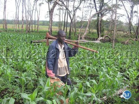 A farmer in Jiwundu Settlement Scheme in Solwezi district