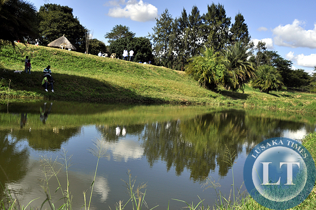 One of the fish ponds at Kalimba Farm where visitors exercise their angling skills