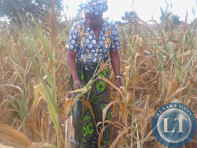 Nawakwi with checking farmers crops