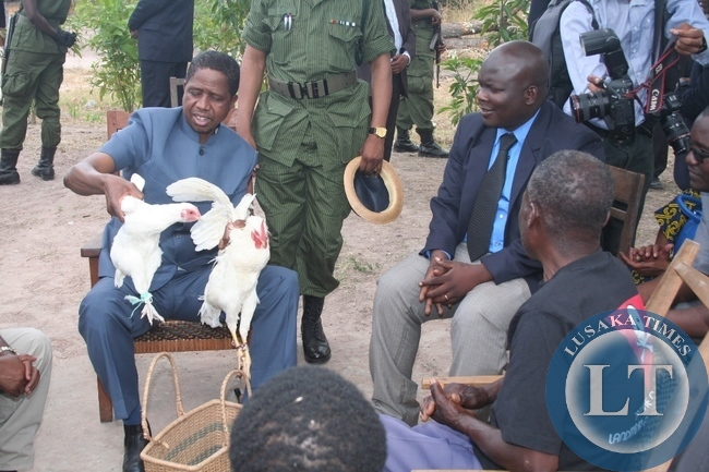 -President Edgar Lungu admires village chickens he received from Enock Makabi, a land mine survivor at Nyeka village in chief Nyakaseya's area in Ikeleng'e