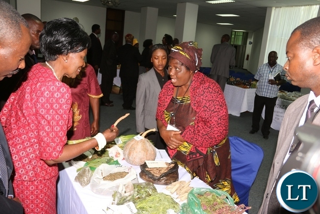 Acting President Inonge Wina visits Mercy Ngandus's Stand of Hantambo Womens Org. from Southern Province