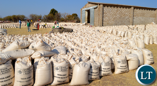 Zambia : Farmers urged to store their maize with ZAMACE while they