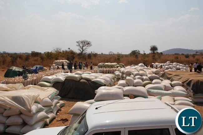 Farmers waiting to sell thrie maize at FRA Chipoka Satellite depot in Mbala