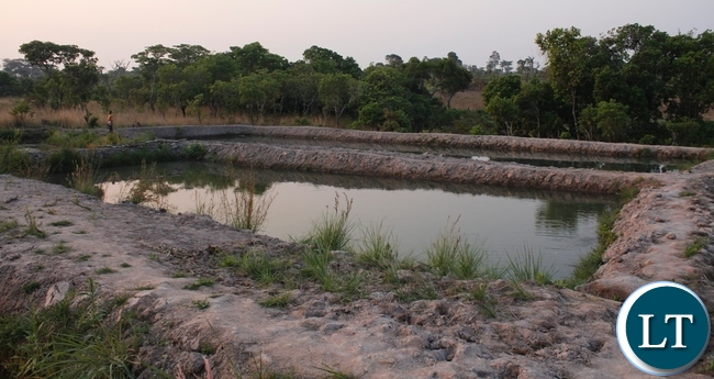 Some fish ponds owned by Chitusa Fish Farming group which has been empowered with 5000 finger lings under Scale Up Nutrition Programme