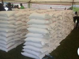 Some of the donated bags of mealie meal