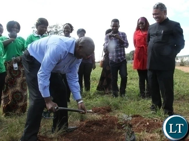 Hope Lilayi Women's club Chairperson Mary Banda(l) planting the acacia tree as Agriculture Minister Given Lubinda(r) looks on during the flag off of the Hope Lilayi Women's club tree planting exercise in Lusaka's Lilayi Area