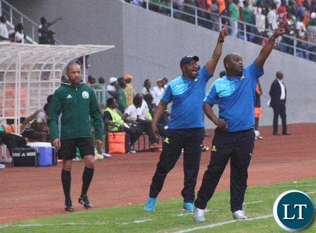 Sundowns technical bench in action
