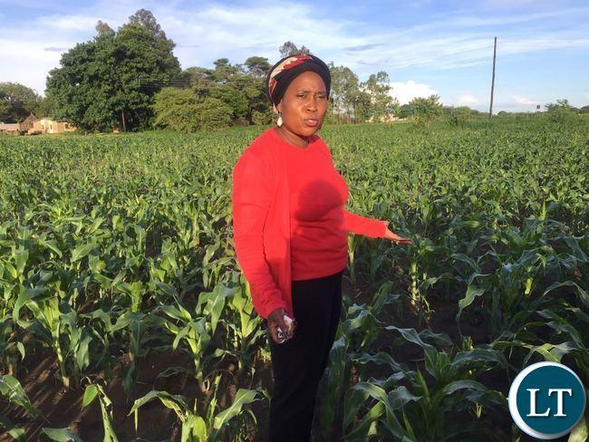 Katuba Member of Parliament Patricia Mwashingwele