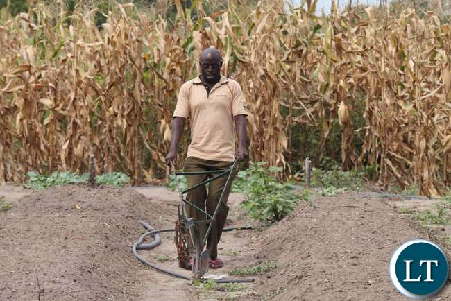 Farmer practicing conservation agriculture