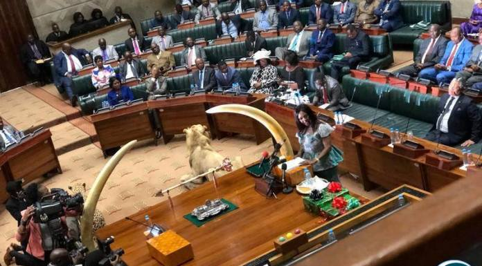 The Presentation of the Budget in Parliament