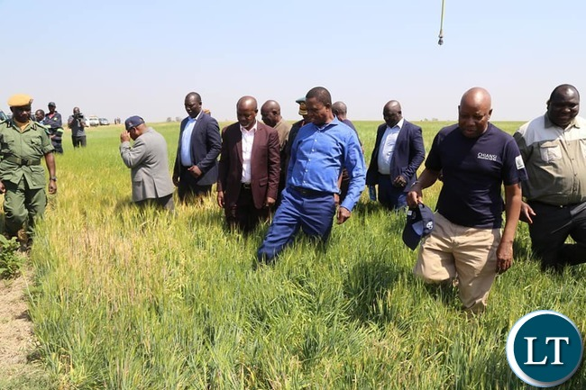 President Lungu at the ground breaking ceremony to mark the beginning of construction works on the Chiansi irrigation project in Chanyanya
