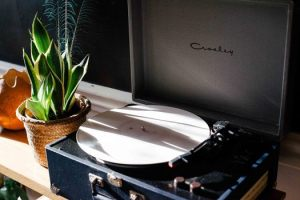 light-vintage-plant-morning-medium