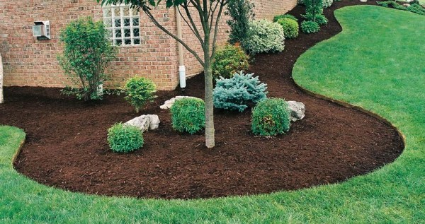 8 great reasons mulch - lush