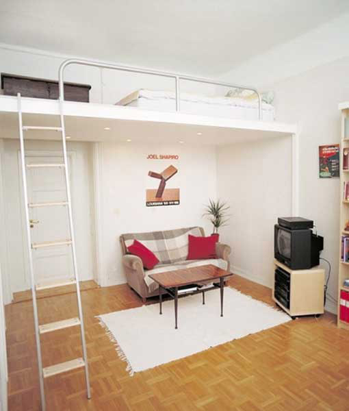 loft bed in living room