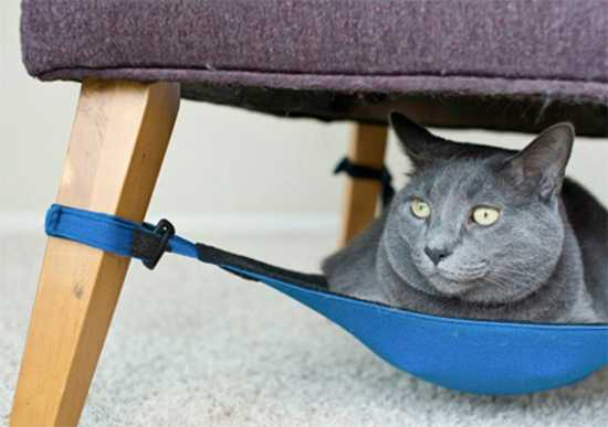 cat hammock under chair foot massage sofa space saving from crib great diy pet design idea suspended a for pets