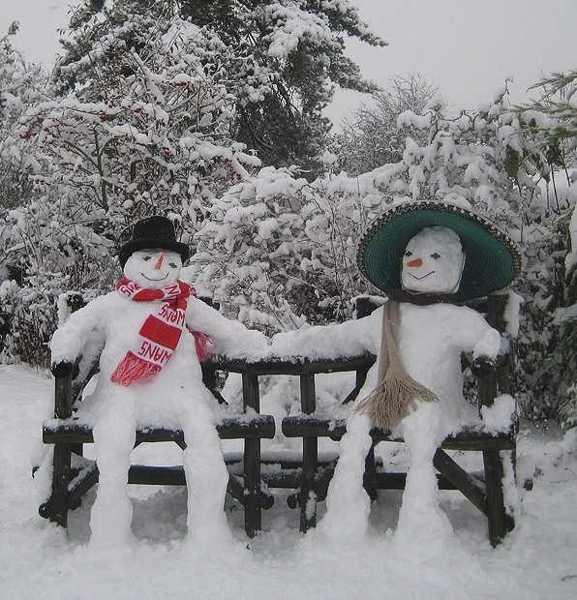 Cute Backyard Ideas For Winter Decorating 25 Creative