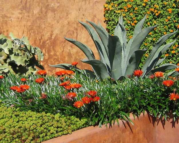 Beautiful Landscaping Ideas and Backyard Designs in Spanish and Italian Styles