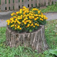 Decorative Chairs Cheap Tolix Side Chair Recycling Tree Stumps For Yard Decorations To Remove Naturally And Effortlessly