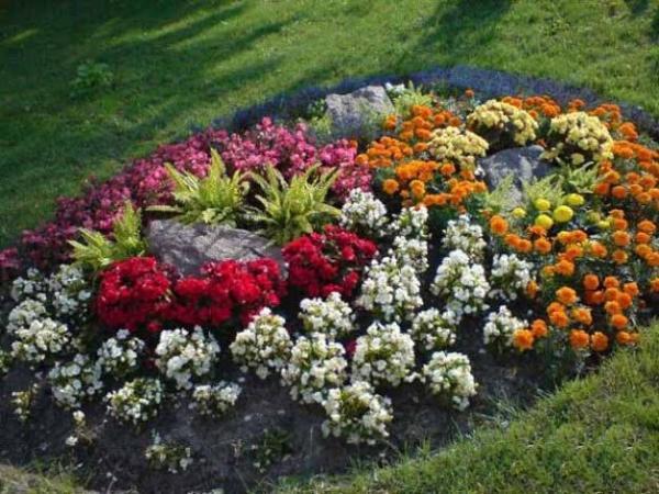 beautiful flower beds adding