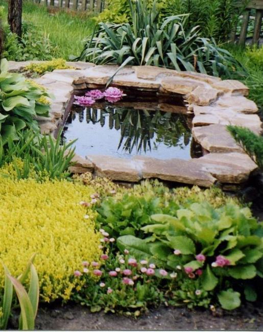 Flowers Grow Ponds