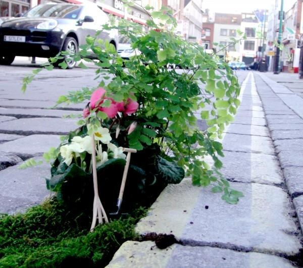 miniature garden design ideas