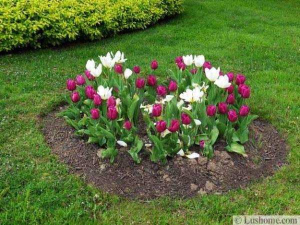 spring garden design 25