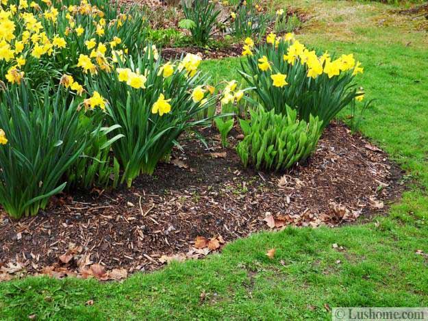 Spring Garden Design 25 Spring Flower Beds and Yard Landscaping Ideas