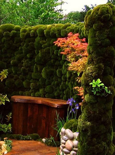 green fence design ideas yard