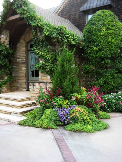 Plants Front House Ideas