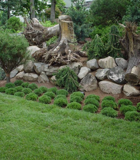 impressive stumpery garden decorations