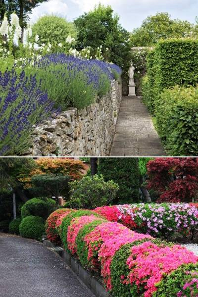 and 30 topiary ideas great