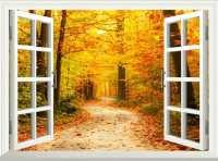 Large Windows Coloring Interior Design with Bright ...